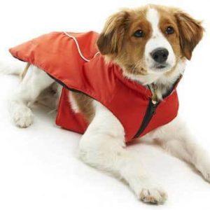 Abrigos para perros Buster Ropa para exteriores Chaquetas de invierno
