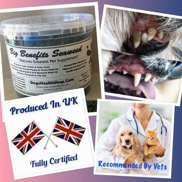 Cats Health Care 200g Vitamins Teeth Clean Coat Conditioner PREMIUM PRODUCT