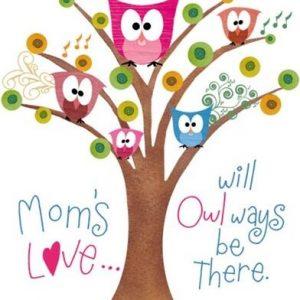 Moms Owl Tree  Tshirt   Sizes/Colors
