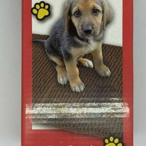 Pet Supplies > Dog Supplies > Grooming > Shampooing & Washing