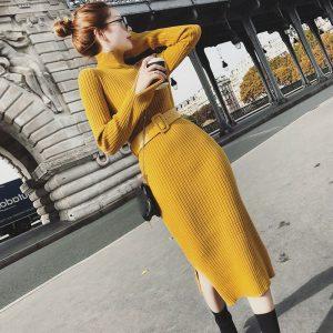 latest Autumn winter Korean fashion High collar shitsuke knitting sweater dress
